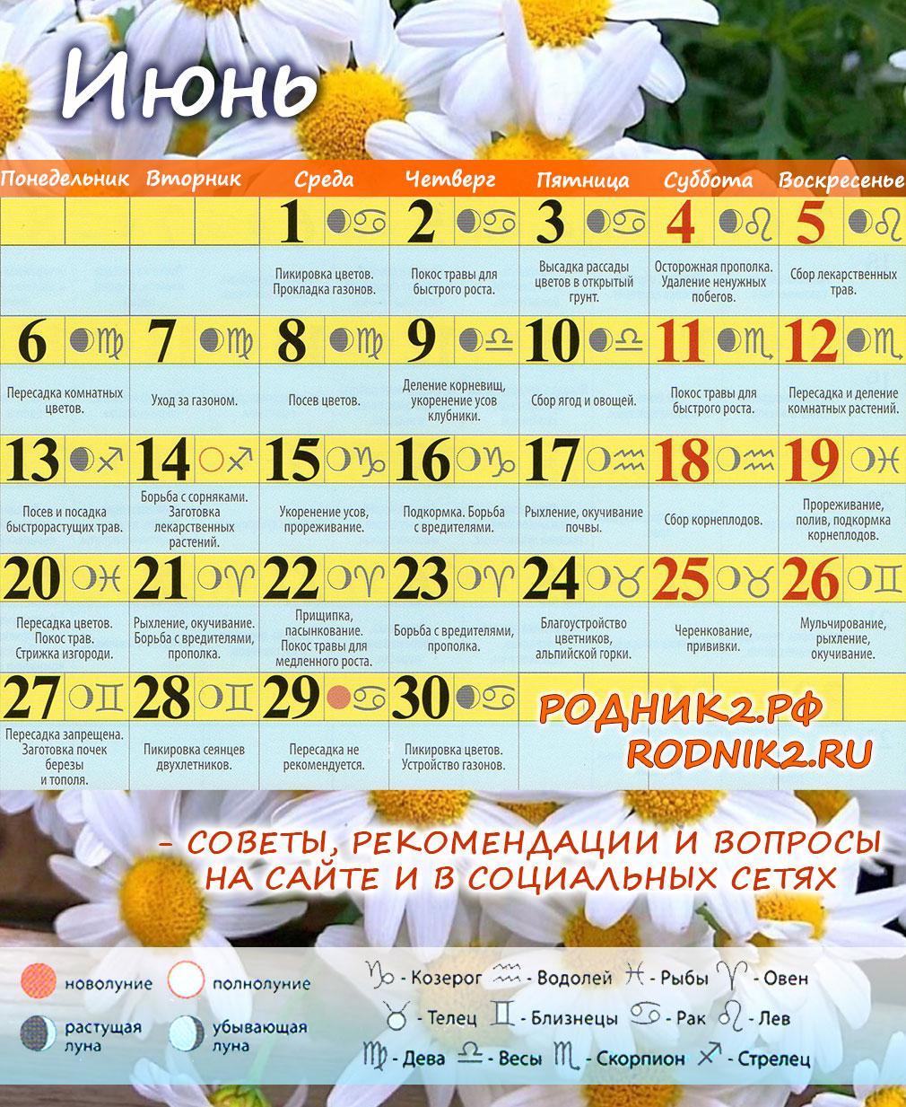 Календарь садовода и огородника на